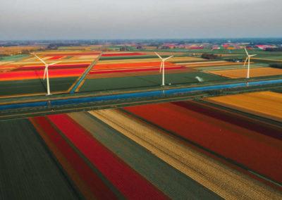 Netherlands-Callantsoog-rDJYMootbXQ-Photo by redcharlie on Unsplash