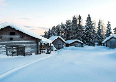 Sweden-Kainulasjärvi-9FWfv4ewI2o-Photo by Robert Gramner on Unsplash